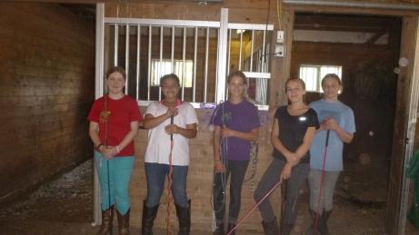 Mustang Camp 1