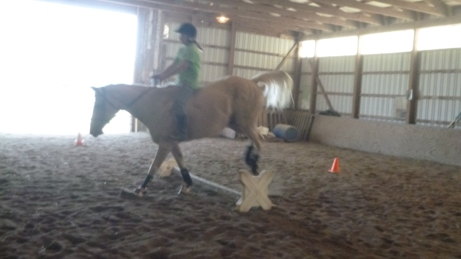 Jumping Bareback--Sid